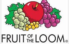 Vzorková sada Fruit Of The Loom Standard - 12 ks